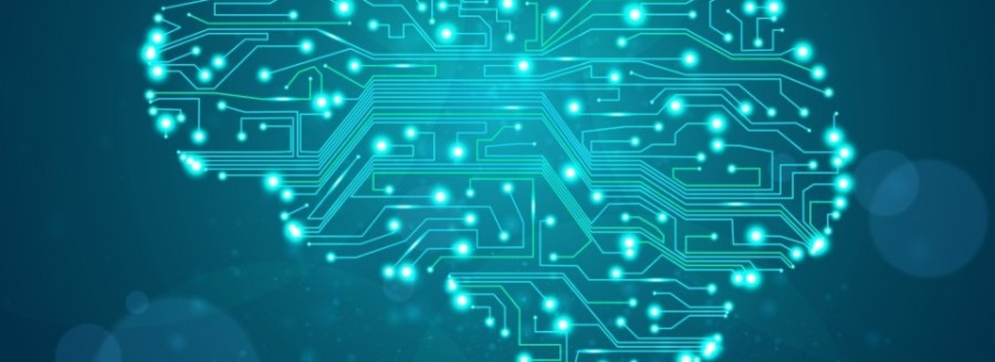 FEATURE-BRAIN-CIRCUITS-ISTOCK-HiRes-1024x1024-960x350