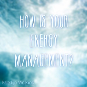 Merlijn Wolsink - Energy Management