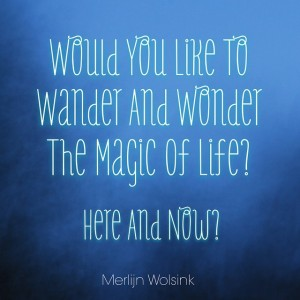 Merlijn Wolsink - Wonder Magic Life