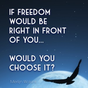 Merlijn Wolsink - Choose Freedom
